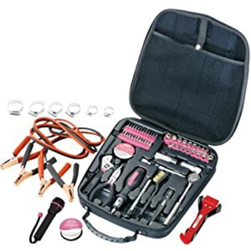 Apollo Precision Tools DT0101P Travel and Automotive Tool Kit, Pink, 64-Piece [Pink]