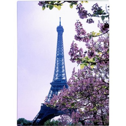 Eiffel Tower with Blossoms by Kathy Yates, 16x24-Inch Canvas Wall Art [16 x 24 Inch]