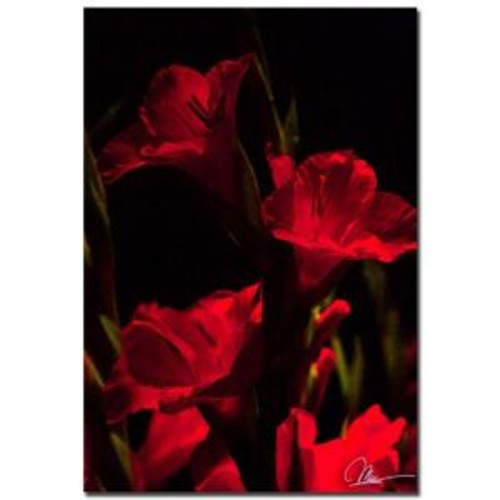 Trademark Fine Art 22 in. x 32 in. Gladiolus IV Canvas Art