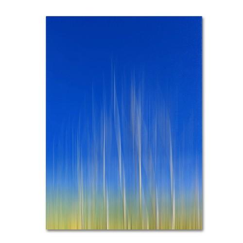 Trademark Fine Art Philippe Sainte-Laudy 'Vertical Activity' Canvas Art 22x32 Inches