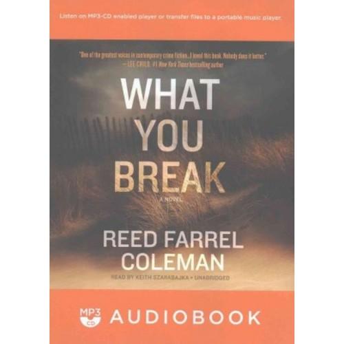 What You Break (MP3-CD) (Reed Farrel Coleman)