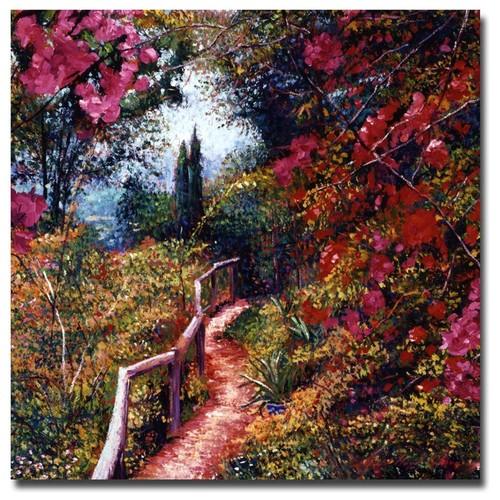 David Lloyd Glover 'Bougainvillea Trail' Canvas Art