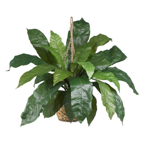 nearly natural Birds Nest Fern Hanging Plant