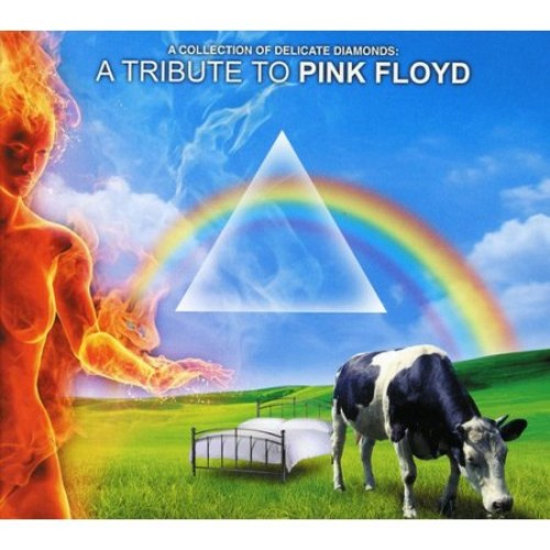 Collection of Delicate Diamonds: A Tribute To Pink Floyd [CD]