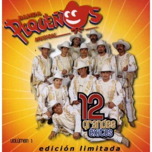 12 Grandes Exitos Volumen 1 [CD]