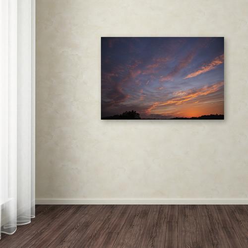 Trademark Fine Art Gallery Wrapped Canvas Kurt Shaffer 'Amazing Grace' Canvas Art [option : 12x19]