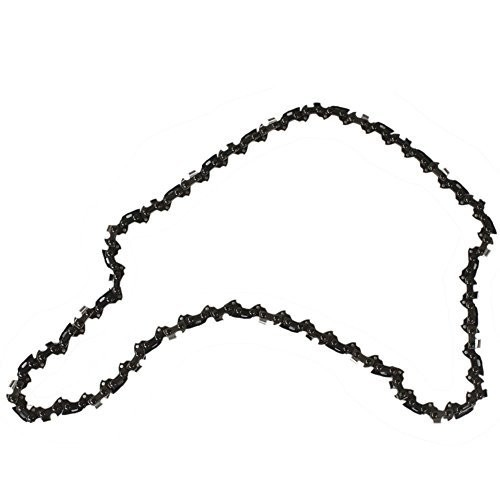 Oregon S56 16-Inch Semi Chisel Chain Saw Chain Fits Craftsman, Echo, Homelite, Poulan, Remington [1]