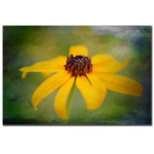 Trademark Fine Art 32 in. x 22 in. Textured Black eyed Susan Canvas Art