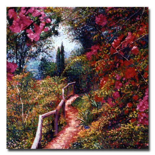 Trademark Fine Art 'Bougainvillea Trail' 35