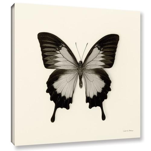 Debra VanSwearington's 'Butterfly III BW' Gallery Wrapped Canvas
