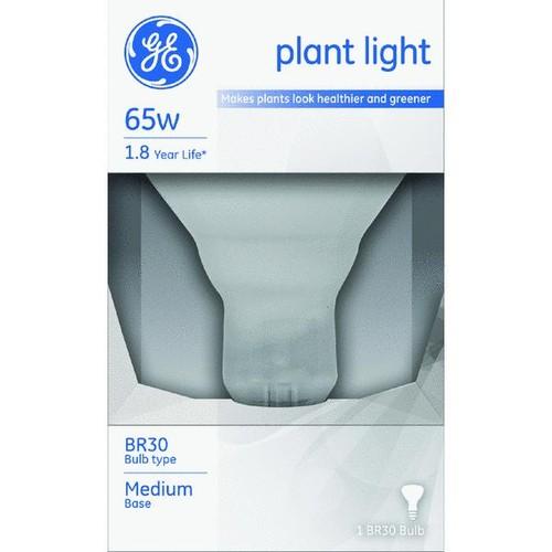 Satco R25 Incandescent Plant Light Bulb - S2851