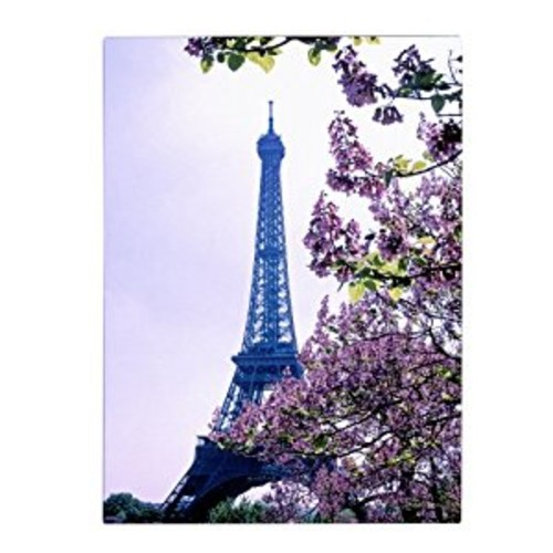 Trademark Fine Art Eiffel Tower with Blossoms by Kathy Yates, 30x47-Inch Canvas Wall Art