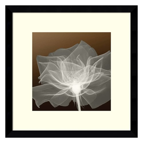 Amanti Art Sheer Delicacy Floral Framed Wall Art