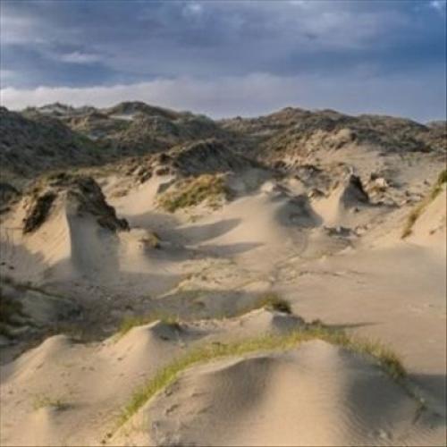 Dune Worship [LP] - VINYL