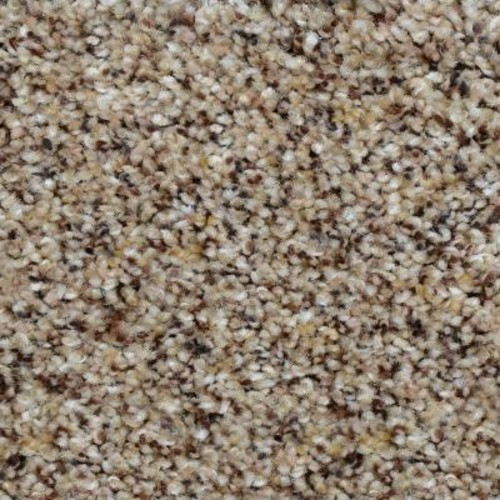 Home Decorators Collection Beach Club II - Color Kingsley Texture 12 ft. Carpet