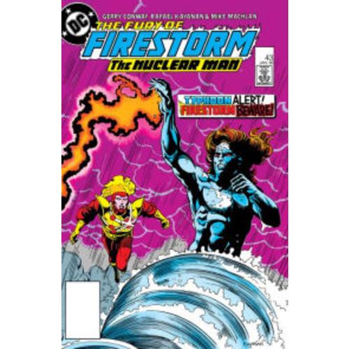 The Fury of Firestorm (1982-) #43