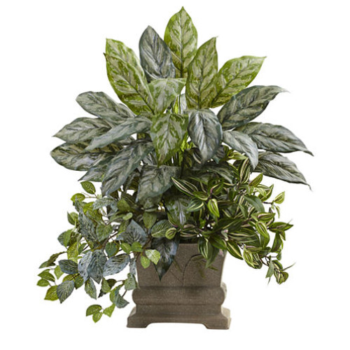28 Mixed Silver Queen, Wandering Jew & Fittonia With Planter