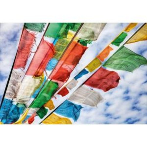 National Geographic 50 in. x 72 in. Prayer Flags Wall Mural