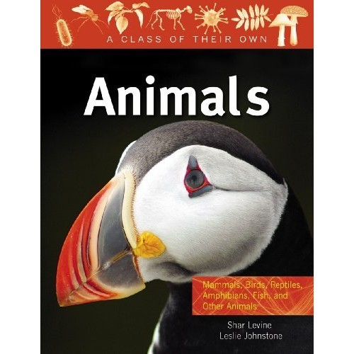 Animals: Mammals, Birds, Reptiles, Amphibians, Fish and Other Animals (A Class of Their Own)