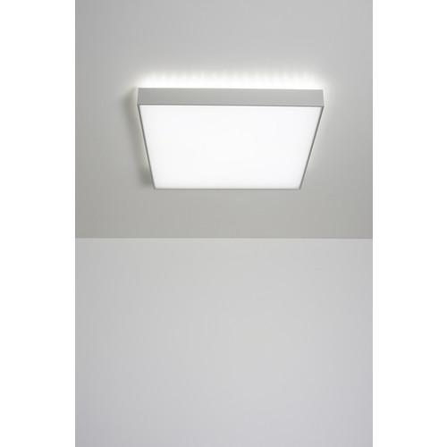 Cadan Wall/Ceiling Light
