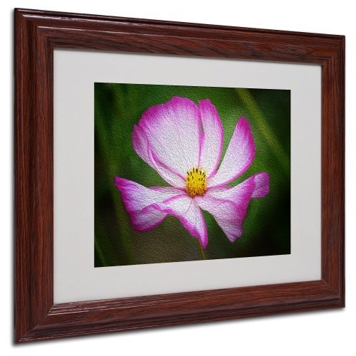 Valentine's Day Canvas Wall Art by Philippe Sainte-Laudy, Wood Frame, 11 by 14-Inch [11 by 14-Inch]