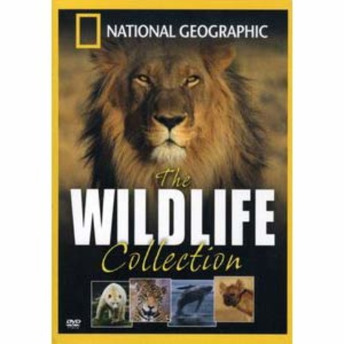National Geographic: The Wildlife Collection [4 Discs]