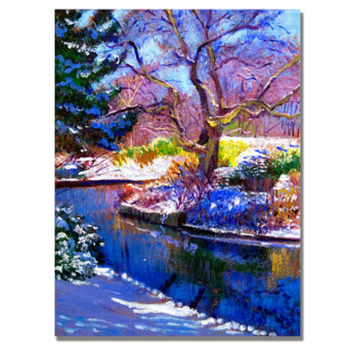 'Snowy Park' by David Lloyd Glover Framed Painting Print on Wrapped Canvas