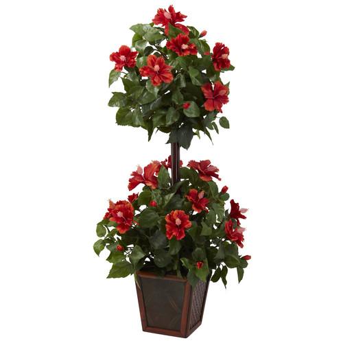 39 Hibiscus Topiary
