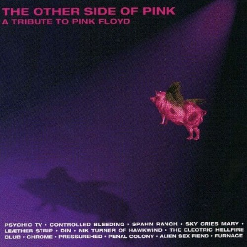 Other Side of Pink: A Tribute to Pink Floyd [CD]