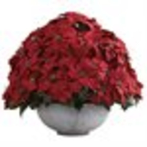 Nearly Natural Holiday 34 in. W x 34 in. D x 29.75 in. H Giant Poinsettia Arrangement with Decorative Planter