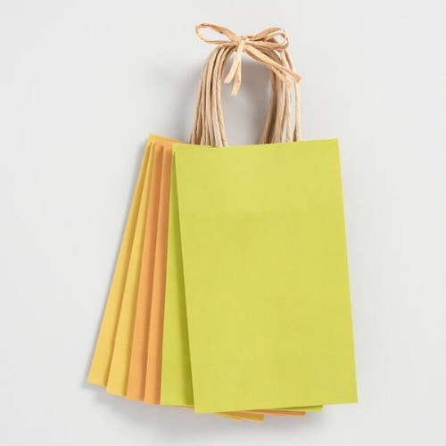 Small Green Kraft Gift Bags Set of 6