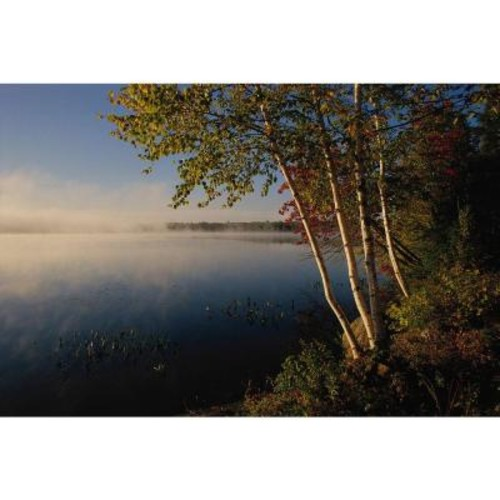 National Geographic 72 in. H x 48 in. W Lake Wall Mural