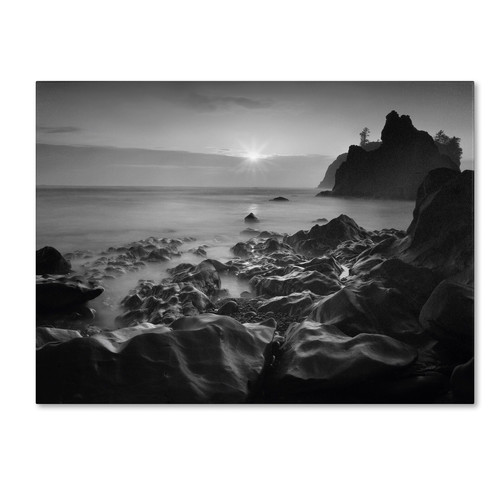 Trademark Global Moises Levy 'Sunset At Ruby Beach' Canvas Art [Overall Dimensions : 14x19]