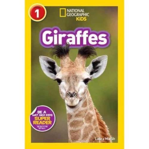 National Geographic Kids Giraffes