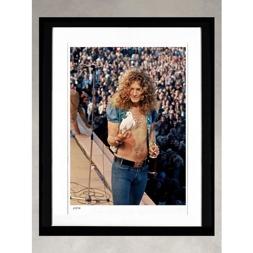 Robert Plant by James Fortune