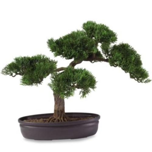 Nearly Natural 4106 16-Inch Cedar Bonsai [Tree]
