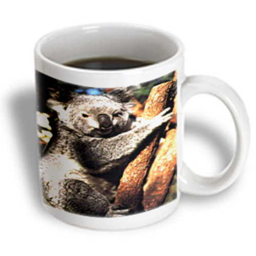 3dRose - Wild animals - Koala - 11 oz mug
