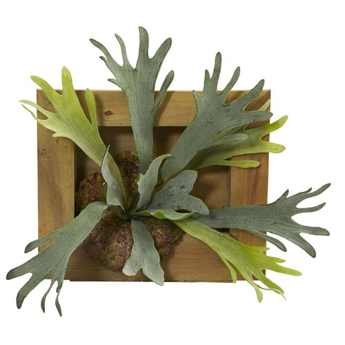 Nearly Natural 13 in. Staghorn Artificial Plant in Wood Hanging Frame