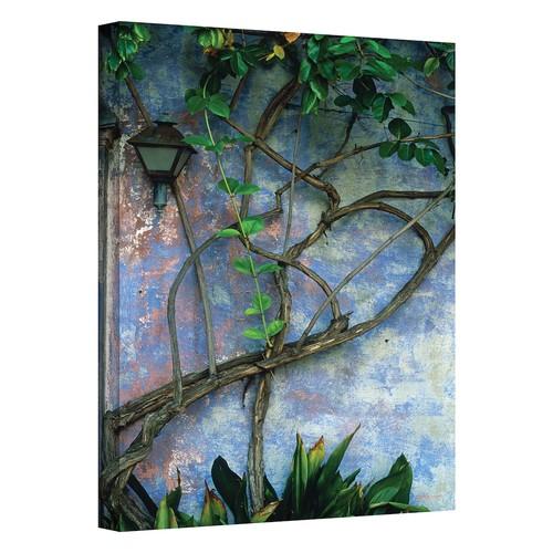 24'' x 36'' ''Vine & Wall'' Canvas Wall Art by Kathy Yates