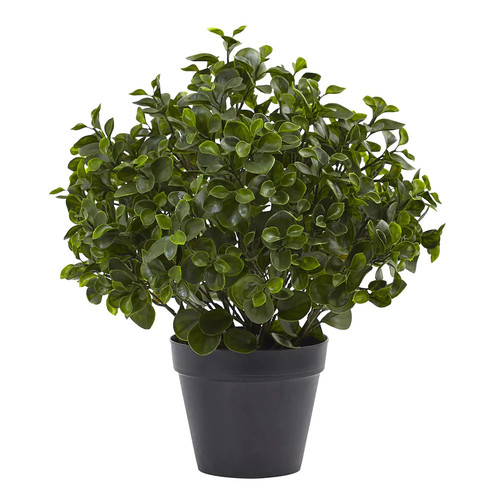 nearly natural Artificial 23-in. Indoor / Outdoor Peperomia Plant