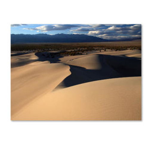 Trademark Global 'Sand Dunes' by Pierre Leclerc Photographic Print on Canvas Size: 16