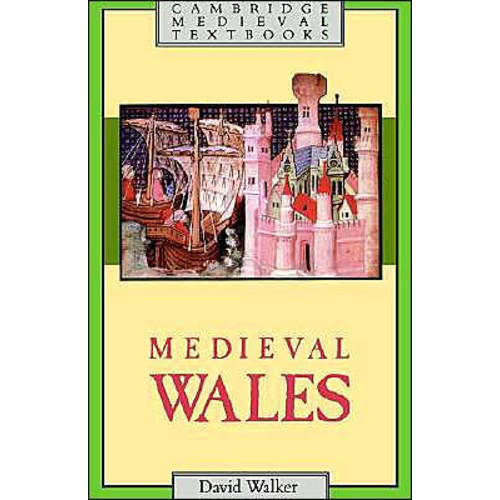 Medieval Wales / Edition 1