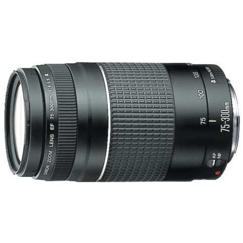 Canon EF 75-300mm f/4-5.6 III Telephoto Zoom Lens for Canon SLR Cameras [Base]