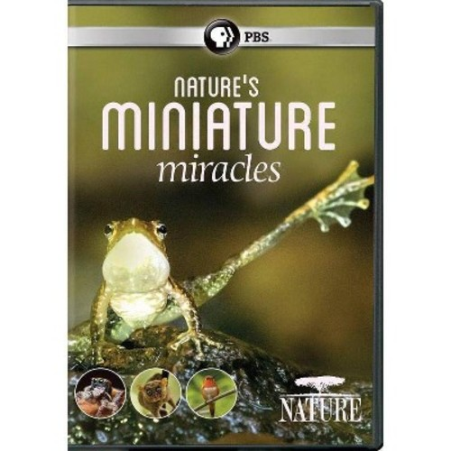 Nature:Nature's Miniature Miracles (DVD)