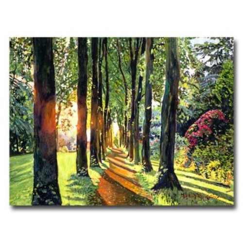 Trademark Fine Art 'Forest of Enchantment' 35