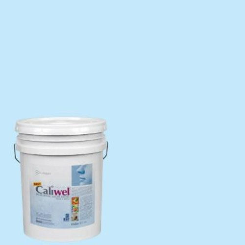 Caliwel Home & Office 5 gal. Comfort Zone Blue Latex Premium Antimicrobial and Anti-Mold Interior Paint