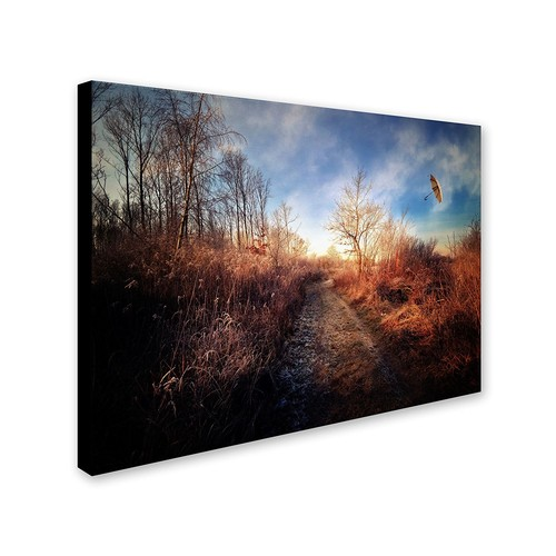Blast of Wind by Philippe Sainte-Laudy, 30 by 47-Inch Canvas Wall Art [30 by 47-Inch]
