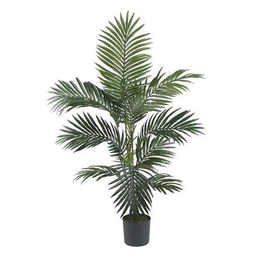 4' Kentia Palm Silk Tree
