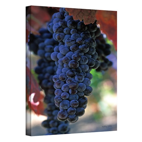 18'' x 12'' ''On the Vine'' Canvas Wall Art by Kathy Yates