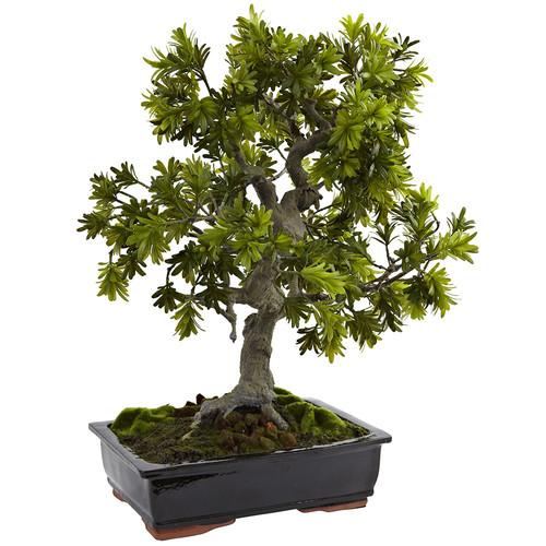 Nearly Natural Giant Podocarpus w/Mossed Bonsai Planter Silk Tree